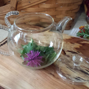 making fresh bee balm tea